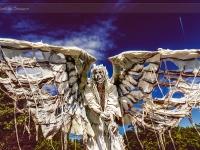 living-statues-herastrau_045_02062012-site