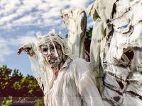 living-statues-herastrau_050_02062012-site