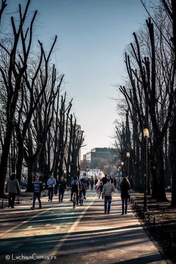 Fotografie de Strada - Parc Herastrau - Primavara