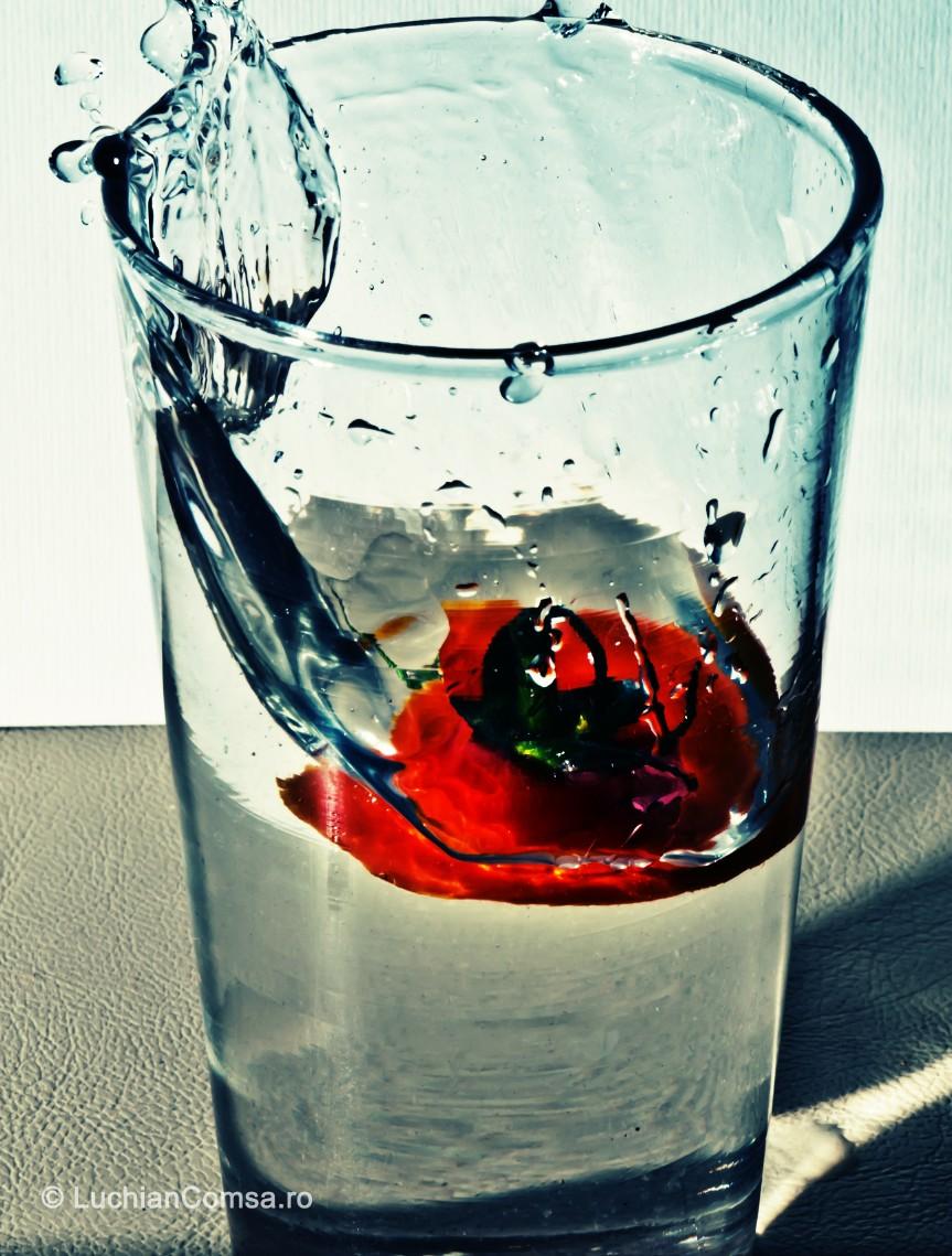 Tomato… drop