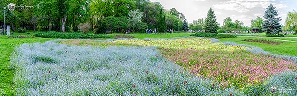 Panorama – Parcul Herastrau!