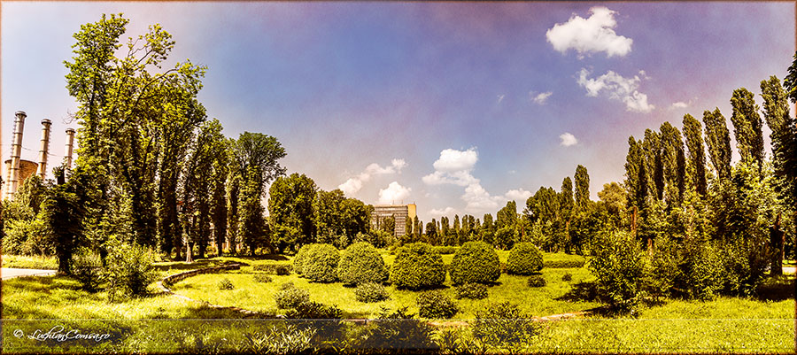 Gradina Botanica – Panorama