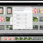 Tutorial Lightroom - Redenumirea fotografiilor.Still001