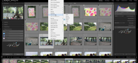 Tutorial Lightroom – Managementul fotografiilor in modulul Library (EP2)
