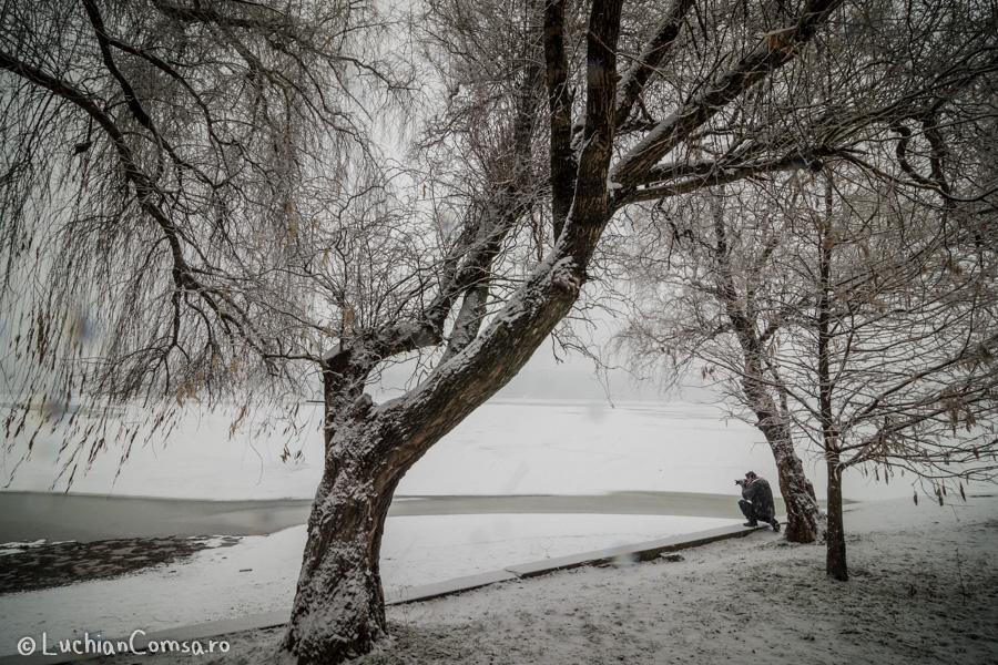 intalnire-nikonisti-parc_12012013_105-site