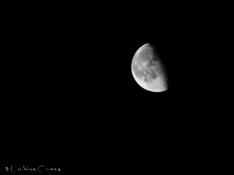 Moon blindness