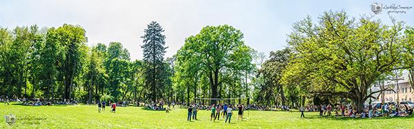 Panorama Palatul Mogosoaia – Zona pentru picnic
